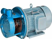厂家直销 1W2.4-10.5 旋涡泵 锅炉泵 锅炉给水泵